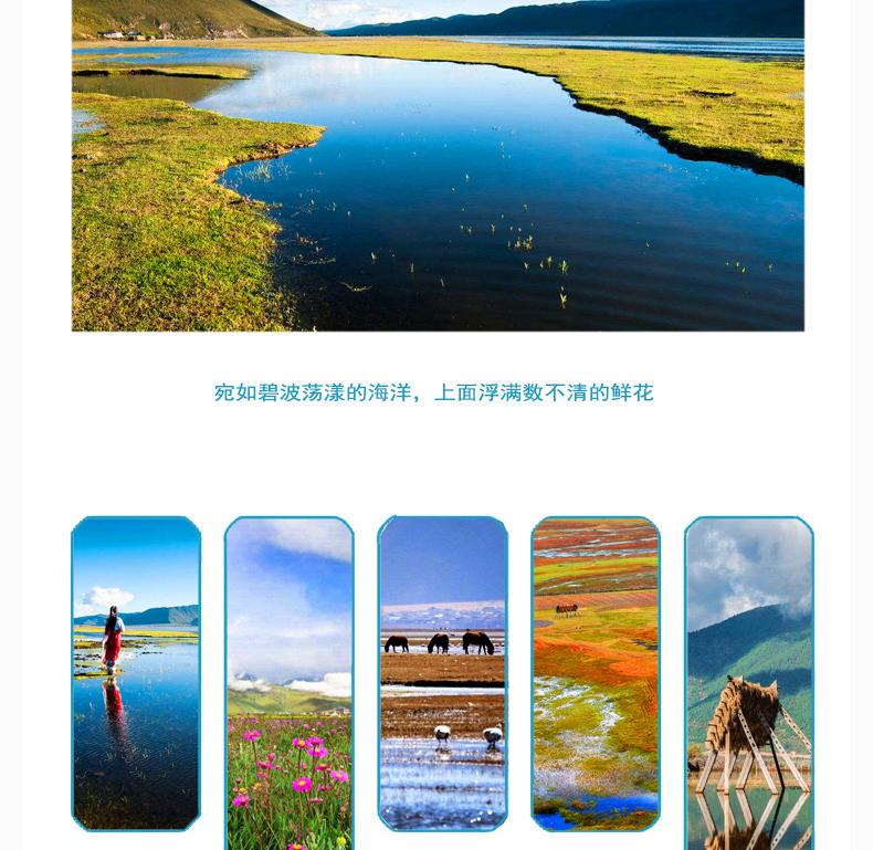 依普常_09.jpg